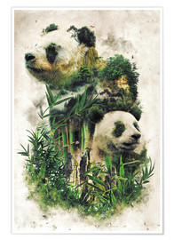 Poster  The Giant Panda - Barrett Biggers