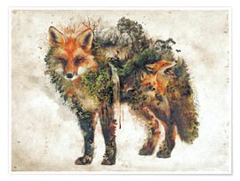 Poster  Surreal Fox Nature - Barrett Biggers
