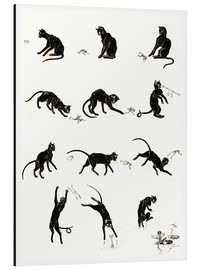 Alu-Dibond  The cat and the frog - Théophile-Alexandre Steinlen