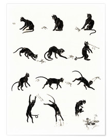 Poster  The cat and the frog - Théophile-Alexandre Steinlen