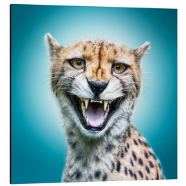 Tableau en aluminium  Funny Wild Faces Cheetah - Manuela Kulpa