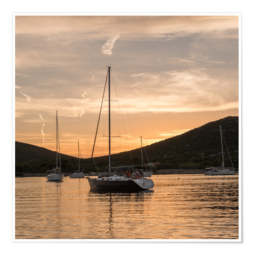 Poster Sailing boats in the Evening Light