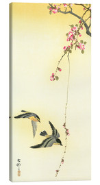 Tableau sur toile  Starlings and Cherry Tree - Ohara Koson