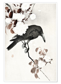 Poster Crow and Cherry Blossoms