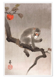 Poster Monkey in a Tree