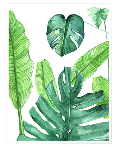 Poster Feuilles tropicales