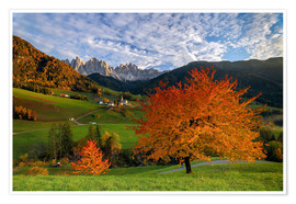Poster Funes Valley in autumn, Dolomites, South Tyrol, Italy