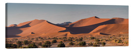 Toile  Dune landscape in the Sossusvlei, Namibia - Circumnavigation