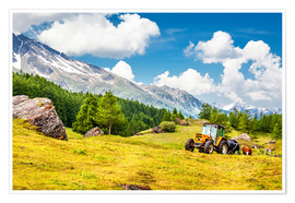 Poster  Tractor in summer field