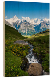 Bois  Mountain panorama with Schreckhorn and Fiescherhorn  View from First, Grindelwald, Switzerland - Peter Wey