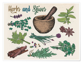 Poster Herbs and spices
