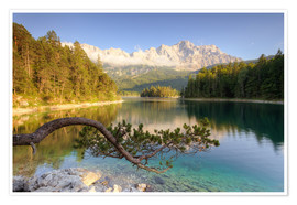 Poster  At the Eibsee in Bavaria - Michael Valjak