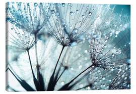 Toile  Dandelion blue art - Julia Delgado