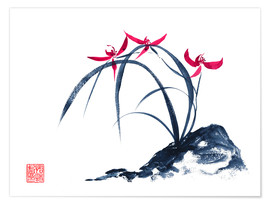 Poster rote Orchidee