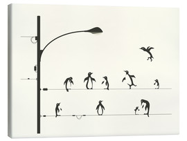 Tableau sur toile  PENGUINS ON A WIRE - Jazzberry Blue