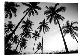 Verre acrylique  Silhouettes of palm trees