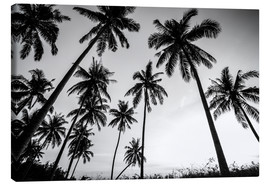 Toile  Silhouettes of palm trees