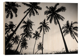 Bois  Silhouettes of palm trees