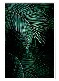 Poster  Palm Leaves 9  - Mareike Böhmer Photography
