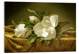 Tableau en verre acrylique  Magnolias on Gold Velvet Cloth - Martin Johnson Heade