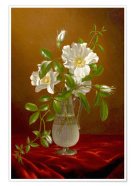 Poster Cherokee Roses in a Glass Vase