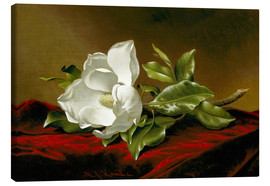 Toile  Magnolia grandiflora - Martin Johnson Heade
