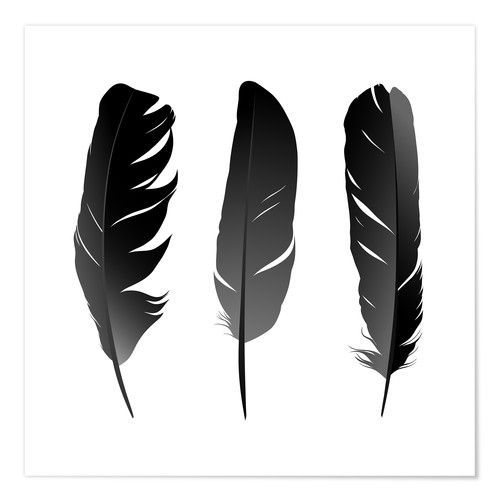Poster Three feathers
