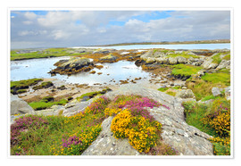 Poster  Ireland Landscape with wild flowers