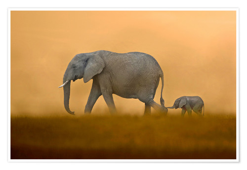 Poster African Elephants mother with baby, Masai Mara