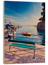 Bois  Bench on the coast of Garda in Peschiera