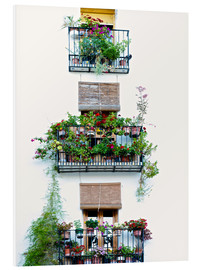 Forex  Facade with balconies full of flowers in Valencia