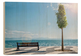 Shore of Lake Garda with Alps on the horizon