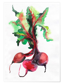 Poster  Radish watercolor