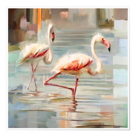 Poster  Flamants de Sardaigne - Johnny Morant