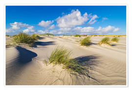Poster Landscape with dunes on the island Amrum