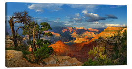 Tableau sur toile  Grand Canyon Idyll - Michael Rucker