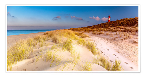 Poster Dunes at the North Sea