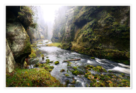 Poster Kamnitz Gorge in the Saxon Switzerland