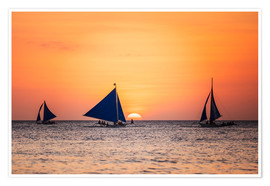 Poster Sailboats in the sunset