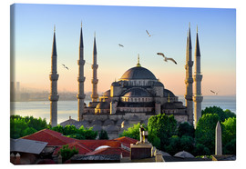 Toile  The blue mosque in Istanbul