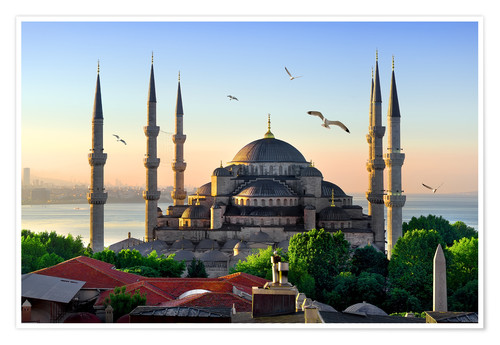 Poster The blue mosque in Istanbul