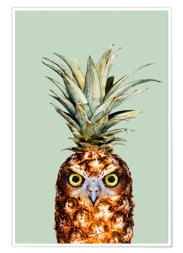 Poster Chouette ananas