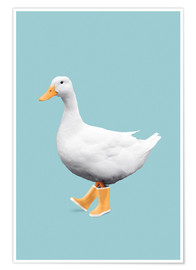 Poster DUCK