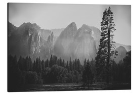 Tableau en aluminium  In the Yosemite valley - Pascal Deckarm