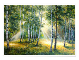 Poster Sunlight in the green forest