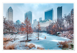 Poster  Winter Central Park, New York - Sascha Kilmer