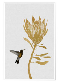 Poster Hummingbird & Flower I