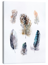Tableau sur toile  Collection de plumes - Verbrugge Watercolor