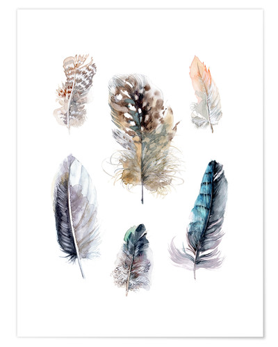 Poster Collection de plumes