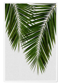 Poster Palm Leaf II